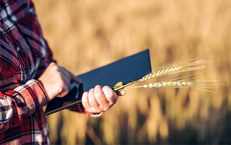 Державний аграрний реєстр працюватиме по всій Україні