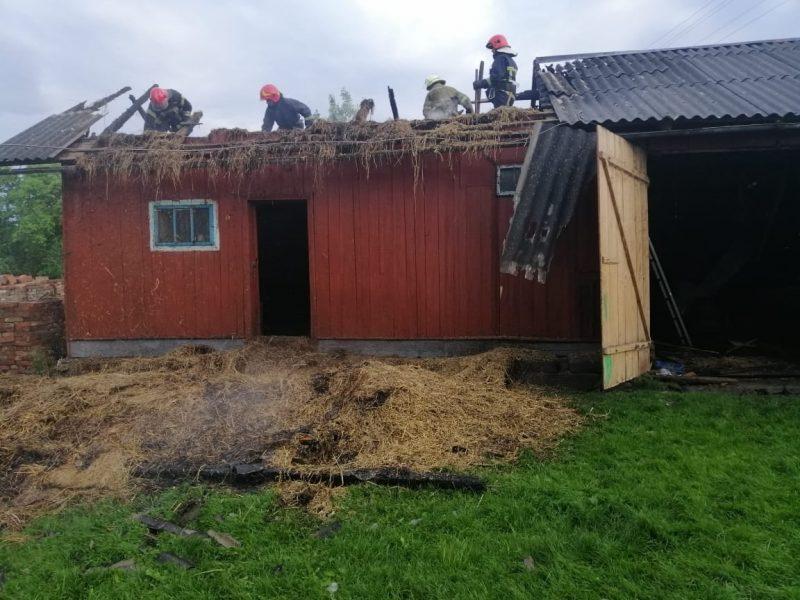 Вогнеборці ліквідували пожежу в Коломийському районі (ФОТО)